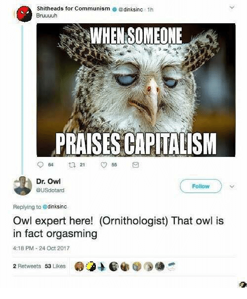Memes, Capitalism, and Communism: Shitheads for Communism @dinksinc 1h  Bruuuuh  WHEN SOMEONE  PRAISES CAPITALISM  64  255  Dr. Owl  ausdotand  Follow  Replying to edinksinc  Owl expert here! (Ornithologist) That owl is  in fact orgasming  4:18 PM-24 Oct 2017  2 Retweets 53 Likes