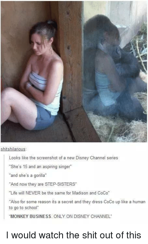 """Disney Channel: shitshilarious  Looks like the screenshot of a new Disney Channel series  She's 15 and an aspiring singer""""  """"and she's a gorilla""""  """"And now they are STEP -SISTERS""""  """"Life will NEVER be the same for Madison and CoCo""""  Also for some reason its a secret and they dress CoCo up like a human  to go to school""""  MONKEY BUSINESS. ONLY ON DISNEY CHANNEL I would watch the shit out of this"""