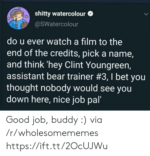 I Bet, Bear, and Good: shitty watercolour  @SWatercolour  do u ever watch a film to the  end of the credits, pick a name,  and think 'hey Clint Youngreen,  assistant bear trainer #3, I bet you  thought nobody would see you  down here, nice job pal' Good job, buddy :) via /r/wholesomememes https://ift.tt/2OcUJWu