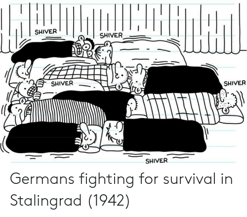 Stalingrad, Survival, and Fighting: SHIVER  SHIVER  SHIVER  SHIVER  SHIVER Germans fighting for survival in Stalingrad (1942)