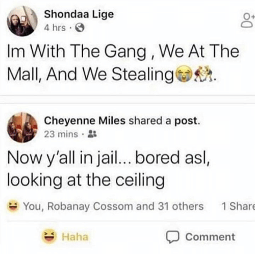Bored, Gang, and Haha: Shondaa Lige  4 hrs  Im With The Gang, We At The  Mall, And We Stealing.  Cheyenne Miles shared a post.  23 mins .  Now y'all in jai... bored asl.  looking at the ceiling  You, Robanay Cossom and 31 others  1Share  Haha  Comment