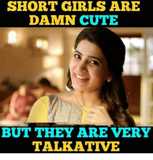 Cute, Girls, and Memes: SHORT GIRLS ARE  DAMN CUTE  BUT THEY ARE VERY  TALKATIVE