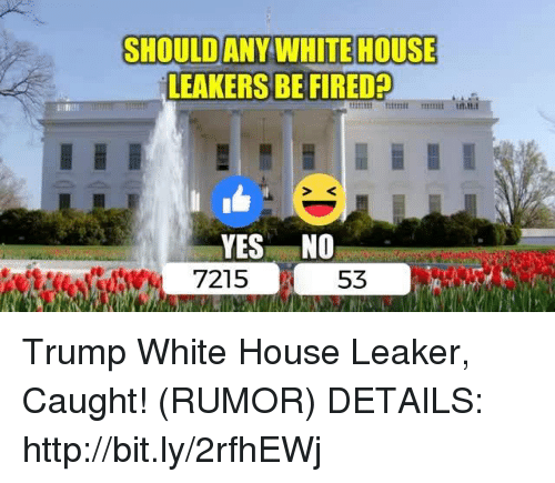 White House, House, and Http: SHOULD ANY WHITE HOUSE  LEAKERS BE FIRED  53 Trump White House Leaker, Caught! (RUMOR)  DETAILS: http://bit.ly/2rfhEWj