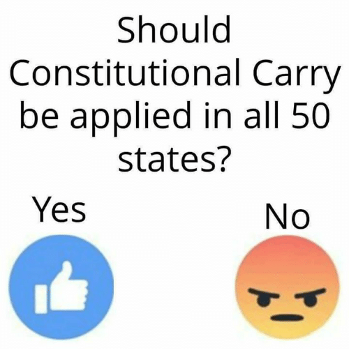Memes, All 50 States, and 🤖: Should  Constitutional Carry  be applied in all 50  states?  Yes  No