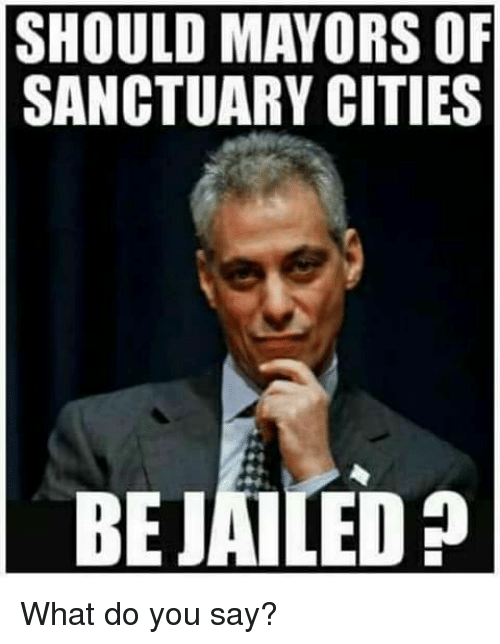 Memes, 🤖, and Sanctuary: SHOULD MAYORS OF  SANCTUARY CITIES  BEJAILED What do you say?