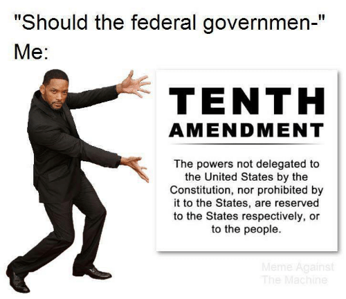 "Constitution: ""Should the federal governmen-""  Ме:  TENTH  AMENDMENT  The powers not delegated to  the United States by the  Constitution, nor prohibited by  it to the States, are reserved  to the States respectively, or  to the people.  Meme Against  The Machine"