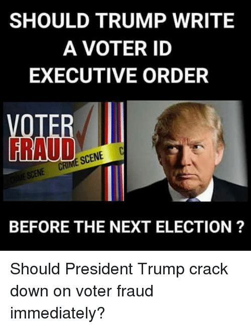 Trump, Next, and Crack: SHOULD TRUMP WRITE  A VOTER ID  EXECUTIVE ORDER  BEFORE THE NEXT ELECTION ? Should President Trump crack down on voter fraud immediately?