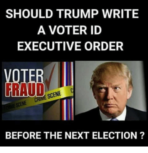 Memes, Trump, and 🤖: SHOULD TRUMP WRITE  A VOTER ID  EXECUTIVE ORDER  RAUD  SCENE C  BEFORE THE NEXT ELECTION ?