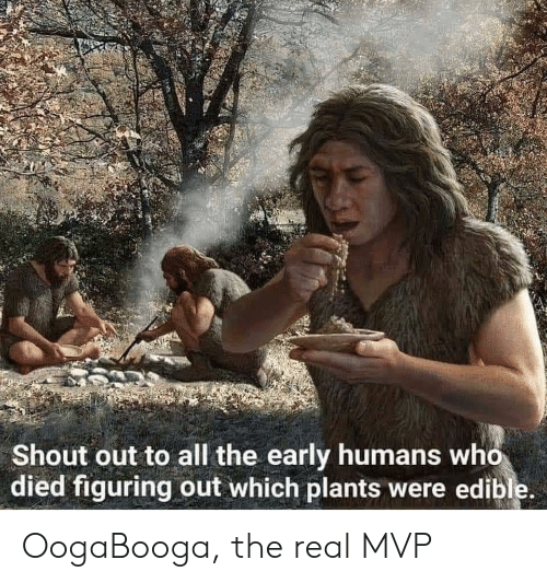 The Real, All The, and Who: Shout out to all the early humans who  died figuring out which plants were edible. OogaBooga, the real MVP