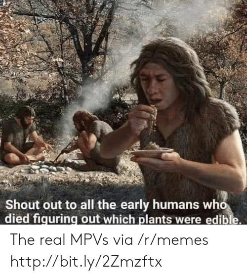 Memes, Http, and The Real: Shout out to all the early humans who  died fiquring out which plants were edible. The real MPVs via /r/memes http://bit.ly/2Zmzftx