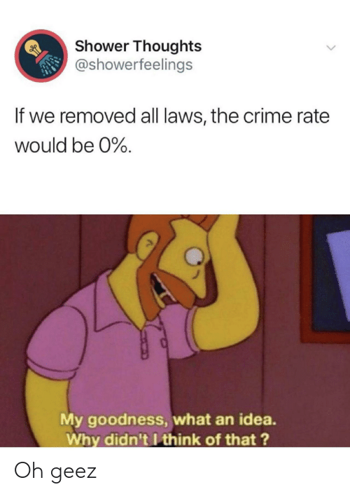 goodness: Shower Thoughts  @showerfeelings  If we removed all laws, the crime rate  would be 0%.  My goodness, what an idea.  Why didn't I think of that?  > Oh geez