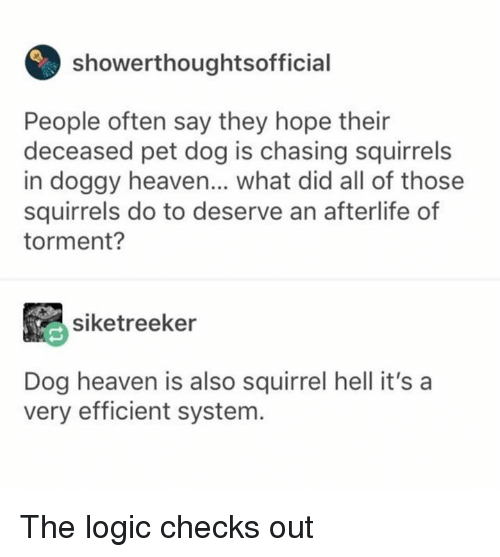 Dank, Heaven, and Logic: showerthoughtsofficial  People often say they hope their  deceased pet dog is chasing squirrels  in doggy heaven... what did all of those  squirrels do to deserve an afterlife of  torment?  siketreeker  Dog heaven is also squirrel hell it's a  very efficient system The logic checks out