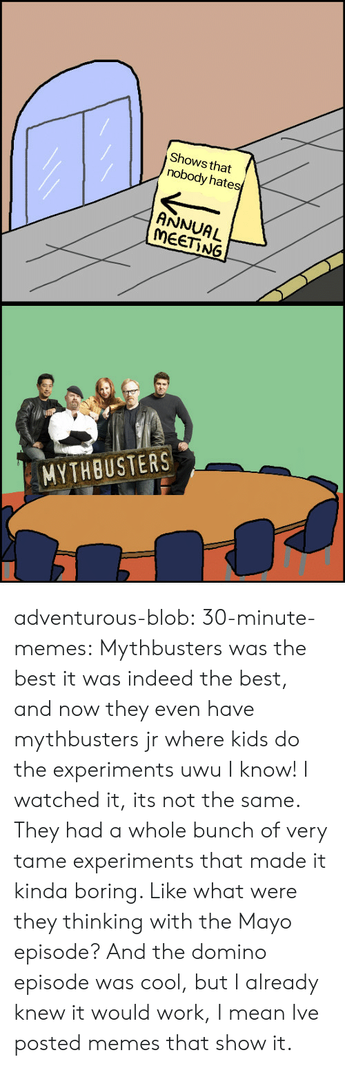 Memes, Tumblr, and Work: Shows that  nobody hates  ANNUAL  MEET NG  MYTHBUSTERS adventurous-blob:  30-minute-memes:  Mythbusters was the best  it was indeed the best, and now they even have mythbusters jr where kids do the experiments uwu   I know! I watched it, its not the same. They had a whole bunch of very tame experiments that made it kinda boring. Like what were they thinking with the Mayo episode? And the domino episode was cool, but I already knew it would work, I mean Ive posted memes that show it.