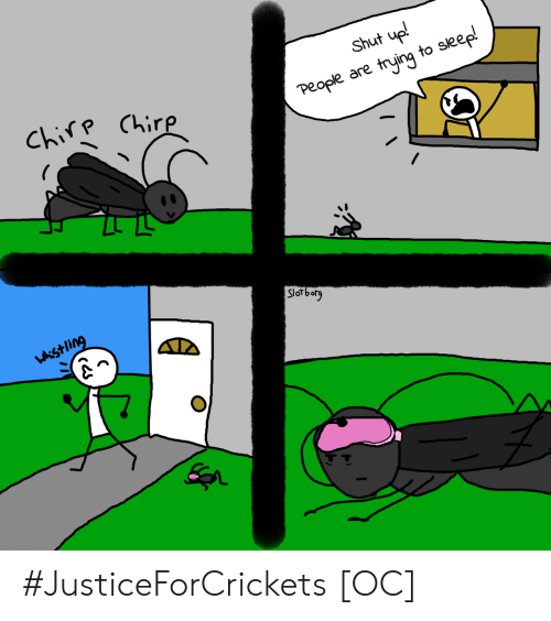 Shut Up, Sleep, and Chirp: Shut up!  Chirp Chirp  People are trying to sleep!  Slorborg  wkistling #JusticeForCrickets [OC]