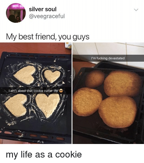 Best Friend, Fucking, and Life: silver soul  @veegraceful  My best friend, you guys  I'm fucking devastated  Lain't about that cookie cútter life my life as a cookie