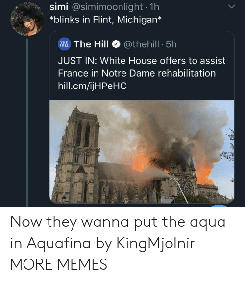 the hill: simi @simimoonlight 1h  *blinks in Flint, Michigan*  WWE.The Hill @thehill 5h  JUST IN: White House offers to assist  France in Notre Dame rehabilitation  hill.cm/ijHPeHC  FIN ZON Now they wanna put the aqua in Aquafina by KingMjolnir MORE MEMES