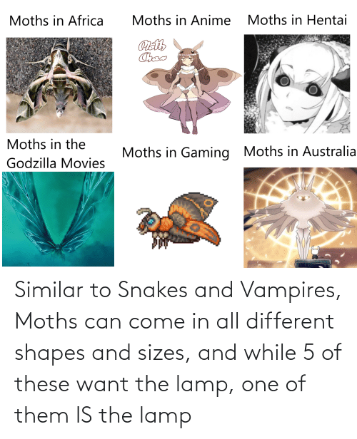 shapes: Similar to Snakes and Vampires, Moths can come in all different shapes and sizes, and while 5 of these want the lamp, one of them IS the lamp