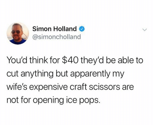 craft: Simon Holland  @simoncholland  You'd think for $40 they'd be able to  cut anything but apparently my  wife's expensive craft scissors are  not for opening ice pops.