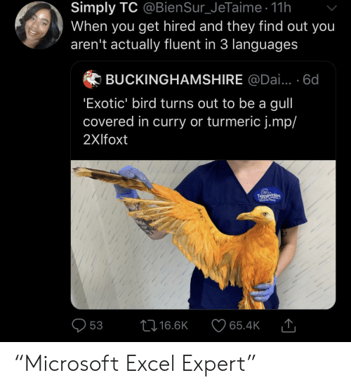 "Excel, Curry, and Dai: Simply TC @BienSur_JeTaime 11h  When you get hired and they find out you  aren't actually fluent in 3 languages  BUCKINGHAMSHIRE @Dai... 6d  'Exotic' bird turns out to be a gull  covered in curry or turmeric j.mp/  2Xlfoxt  Tiggyawinkdes  Wildlife Nune  L16.6K  53  65.4K ""Microsoft Excel Expert"""