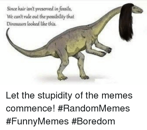 Memes, Dinosaurs, and Hair: Since hair isn't preserved in fossils,  We can't rule out the possibility that  Dinosaurs looked ltike this. Let the stupidity of the memes commence! #RandomMemes #FunnyMemes #Boredom