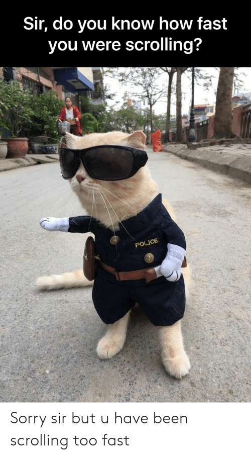 Funny, Police, and Sorry: Sir, do you know how fast  you were scrolling?  POLICE Sorry sir but u have been scrolling too fast