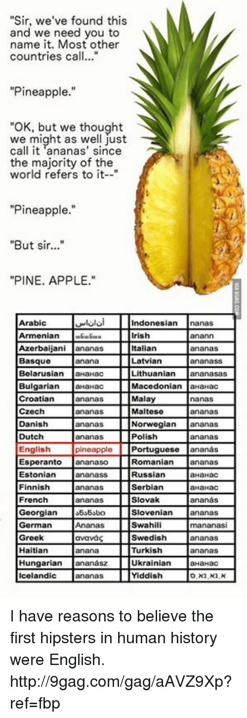 "Dank, 🤖, and Human: ""Sir, we've found this  and we need you to  name it. Most other  countries ca  Pineapple.  ""OK, but we thought  we might as well just  call it ananas' since  the majority of the  world refers to it  ""Pineapple.""  ""But sir...""  ""PINE. APPLE.""  Arabic Indonesian Lanas  Azerbaijani ananas IDtalian ananas  Bulgarian aHaHac  I Macedonian aHaHac  Croatian ananas Malay nanas  czech ananas i Maltese ananas  Danish i Norwegian ananas  Dutch ananas Polish ananas  pineapple iPortuguese ananas  English  Romanian ananas  Esperanto ananaso  Estonian Lananass  i Russian ONahac  Finnish ananas iSerbian HaHac  French ananas Slovak ananas  Slovenian ananas  German Atanas Iswahili mananasi  Haitian anana i Turkish ananas  Hungarian ananasz Ukrainian  HaHaC  Ananas Yiddish I have reasons to believe the first hipsters in human history were English. http://9gag.com/gag/aAVZ9Xp?ref=fbp"