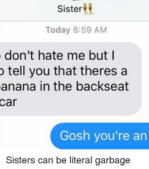 Sisters, Hate, and Ananas: Sister  Today 8:59 AM  don't hate me but I  o tell you that theres a  anana in the backseat  Gosh you're an Sisters can be literal garbage