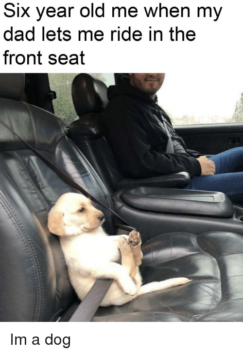 Dad, Old, and Dog: Six year old me when my  dad lets me ride ih the  front seat Im a dog