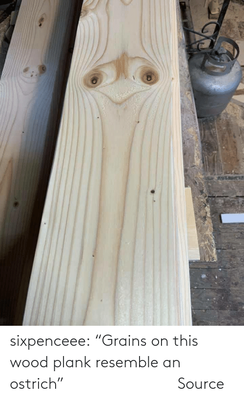 "pics: sixpenceee:   ""Grains on this wood plank resemble an ostrich""                             Source"