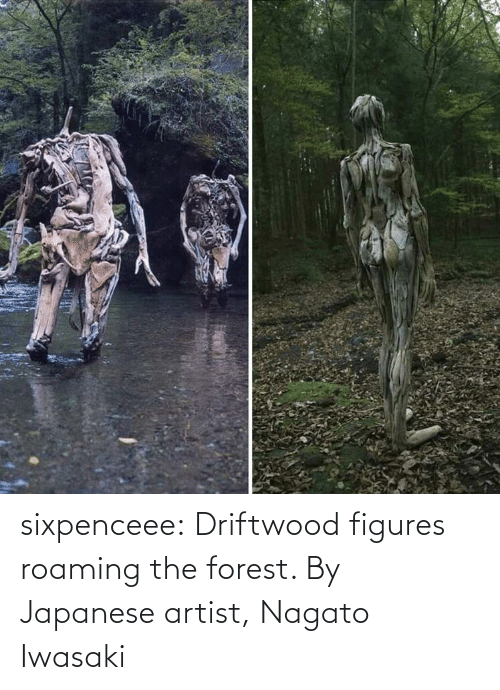 figures: sixpenceee:  Driftwood figures roaming the forest. By Japanese artist, Nagato Iwasaki