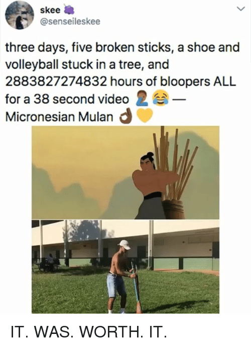 Bloopers: skee  @senseileskee  three days, five broken sticks, a shoe and  volleyball stuck in a tree, and  2883827274832 hours of bloopers ALL  for a 38 second video 2  Micronesian Mulan d IT. WAS. WORTH. IT.