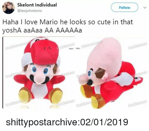 Cute, Love, and Tumblr: Skelont Individual  @lexijohnstonx  Follow  Haha I love Mario he looks so cute in that  yoshA aaAaa AA AAAAAa  NEXT PREV shittypostarchive:02/01/2019