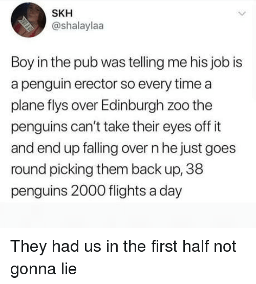Penguin, Penguins, and Time: SKH  @shalaylaa  Boy in the pub was telling me his job is  a penguin erector so every time a  plane flys over Edinburgh zoo the  penguins can't take their eyes off it  and end up falling over n he just goes  round picking them back up, 38  penguins 2000 flights a day They had us in the first half not gonna lie