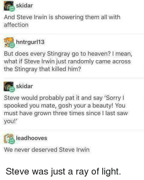 Heaven, Saw, and Sorry: skidar  And Steve Irwin is showering them all with  affection  hntrl3  But does every Stingray go to heaven? I mean,  what if Steve Irwin just randomly came across  the Stingray that killed him?  skidar  Steve would probably pat it and say 'Sorry I  spooked you mate, gosh your a beauty! You  must have grown three times since I last saw  you!  leadhooves  We never deserved Steve Irwin <p>Steve was just a ray of light.</p>