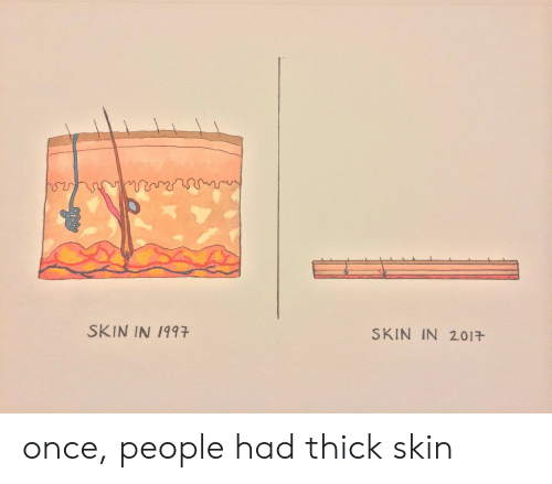 thick skin: SKIN IN 1997  SKIN IN 2017- once, people had thick skin