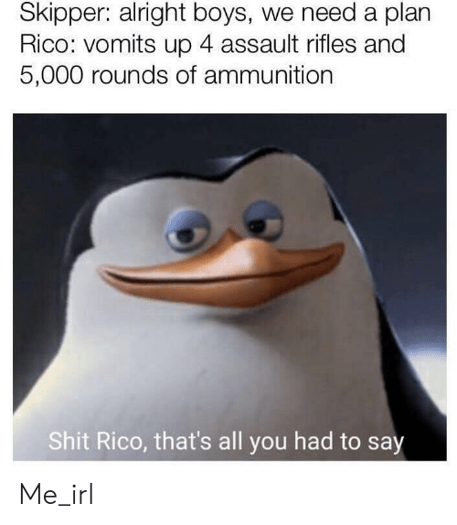 Shit, Irl, and Me IRL: Skipper: alright boys, we need a plan  Rico: vomits up 4 assault rifles and  5,000 rounds of ammunition  Shit Rico, that's all you had to say Me_irl