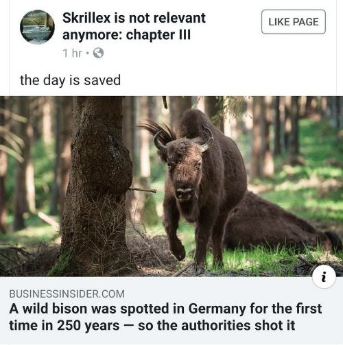 Skrillex, Germany, and Time: Skrillex is not relevant  LIKE PAGE  anymore: chapter III  1 hr  the day is saved  i  BUSINESSINSIDER.COM  A wild bison was spotted in Germany for the first  time in 250 years so the authorities shot it
