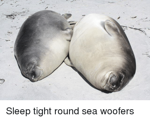 Sleep, Sleep Tight, and Tight: Sleep tight round sea woofers