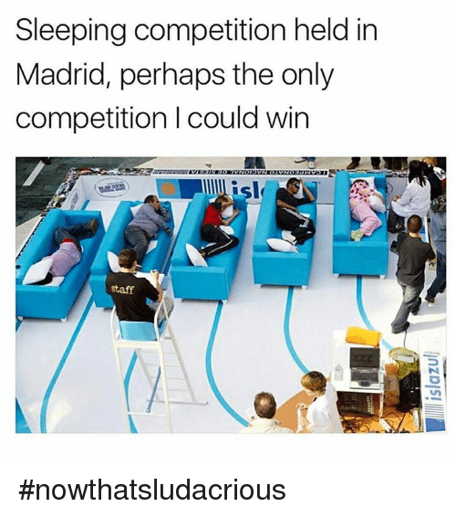 Memes, Sleeping, and 🤖: Sleeping competition held in  Madrid, perhaps the only  competition I could win  staff #nowthatsludacrious