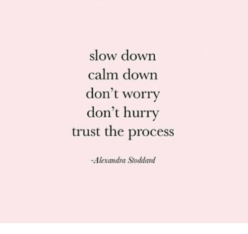 Trust The Process: slow down  calm down  don't worry  don't hurry  trust the process  Alexandra Stoddard