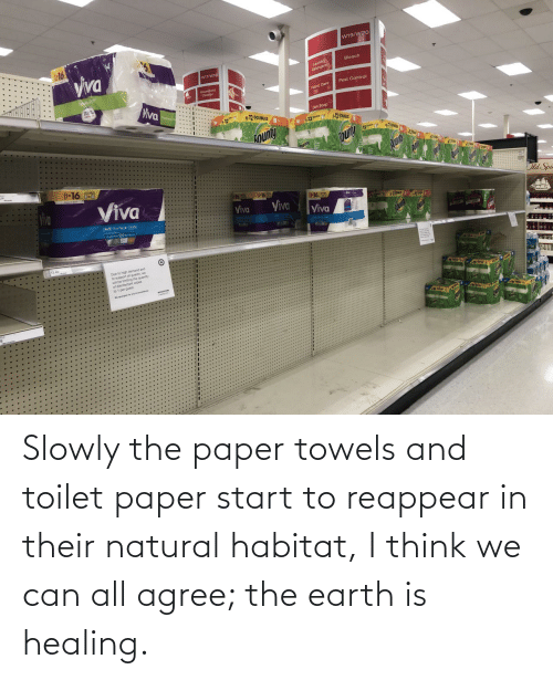 Earth: Slowly the paper towels and toilet paper start to reappear in their natural habitat, I think we can all agree; the earth is healing.