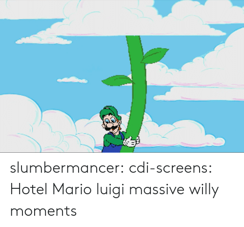Tumblr, Mario, and Blog: slumbermancer:  cdi-screens: Hotel Mario luigi massive willy moments