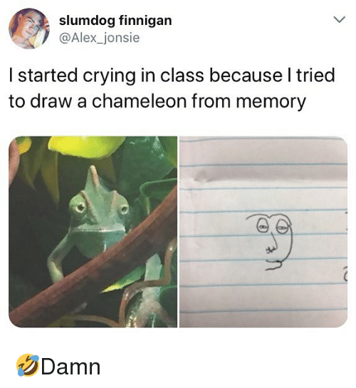 Crying, Memes, and Chameleon: slumdog finnigan  @Alex_jonsie  I started crying in class because l tried  to draw a chameleon from memory 🤣Damn