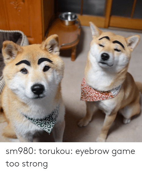 Target, Tumblr, and Blog: sm980:  torukou: eyebrow game too strong