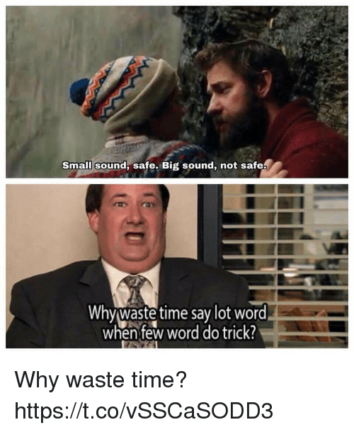 Memes, Time, and Word: Small sound, safe. Big sound, not safea  Whywaste time say lot word  when few word do trick! Why waste time? https://t.co/vSSCaSODD3