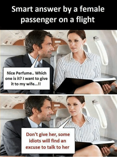 Memes, Flight, and Wife: Smart answer by a female  passenger on a flight  Nice Perfume.. Which  one is it? I want to give  it to my wife...!!  Don't give her, some  idiots will find an  excuse to talk to her