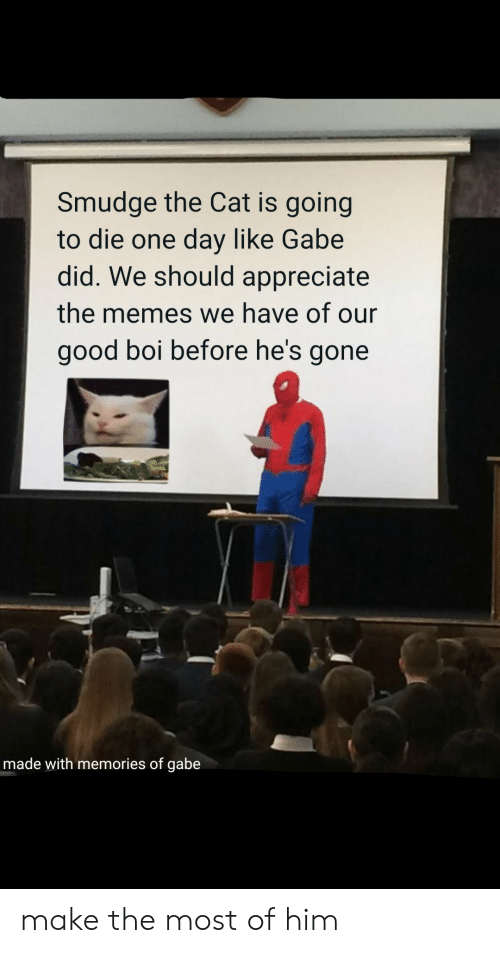 Hes Gone: Smudge the Cat is going  to die one day like Gabe  did. We should appreciate  the memes we have of our  good boi before he's gone  made with memories of gabe make the most of him