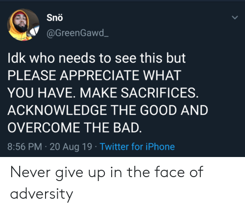 Bad, Iphone, and Twitter: Snö  @GreenGawd  Idk who needs to see this but  PLEASE APPRECIATE WHAT  YOU HAVE. MAKE SACRIFICES.  ACKNOWLEDGE THE GOOD AND  OVERCOME THE BAD.  8:56 PM 20 Aug 19 Twitter for iPhone Never give up in the face of adversity
