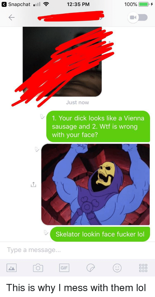 Anaconda, Gif, and Lol: Snapchat nil  12:35 PM  100%  +  Just now  1. Your dick looks like a Vienna  sausage and 2. Wtf is wrong  with your face?  Skelator lookin face fucker lol  Type a message...  GIF