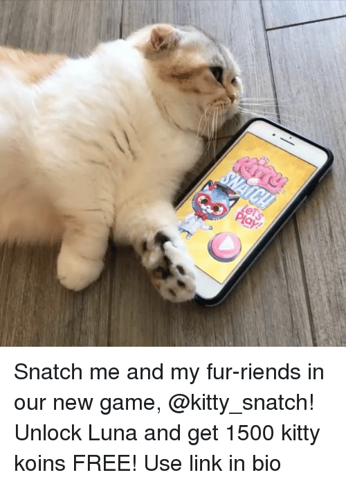 Memes, Free, and Game: Snatch me and my fur-riends in our new game, @kitty_snatch! Unlock Luna and get 1500 kitty koins FREE! Use link in bio